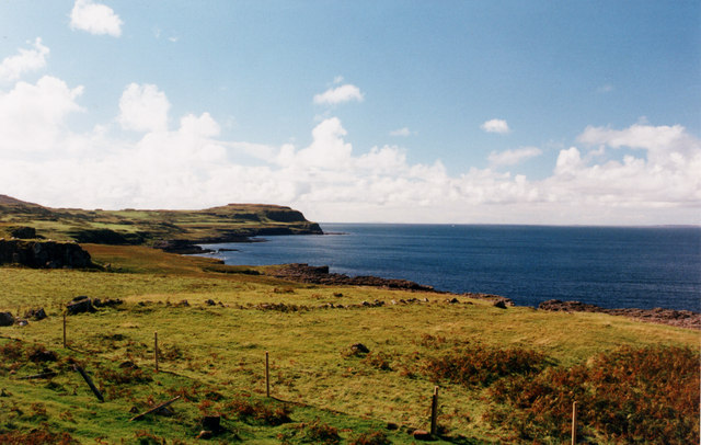 Rough Pasture near Treshnish