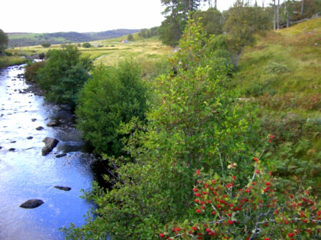 River Brora.