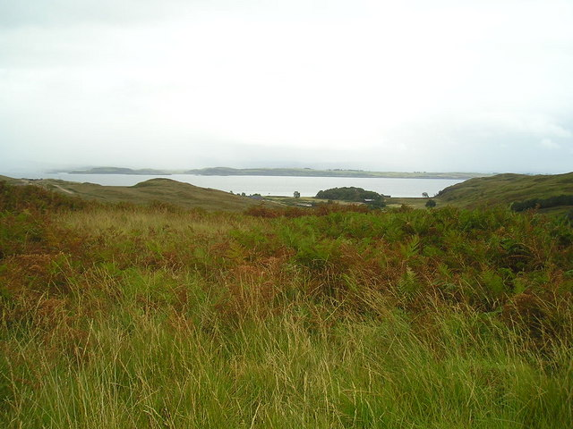 Bracken and heath at Lower Glensanda