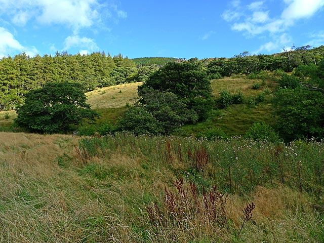 Hillside near Inverlael Farm