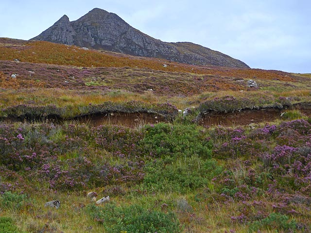Moorland near Achnacarinan