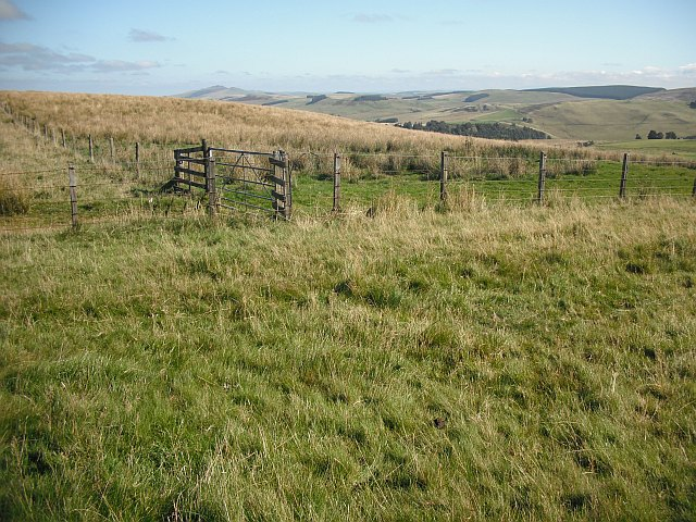 Fence junction, Penchrise