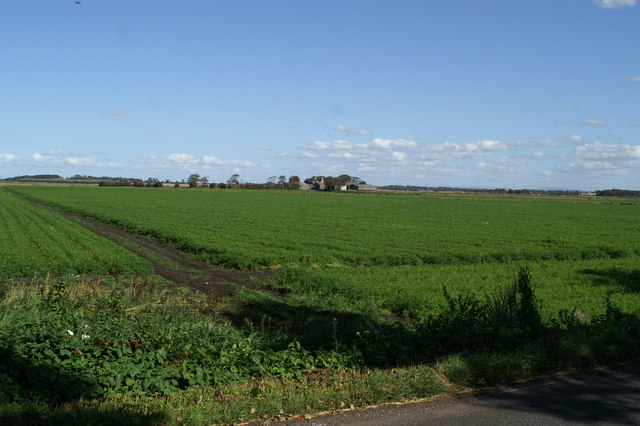 View from Carr Moss Lane across the carrot fields