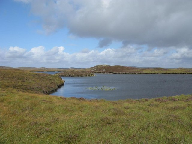 Lilly pads on Loch Cul Airigh a flod