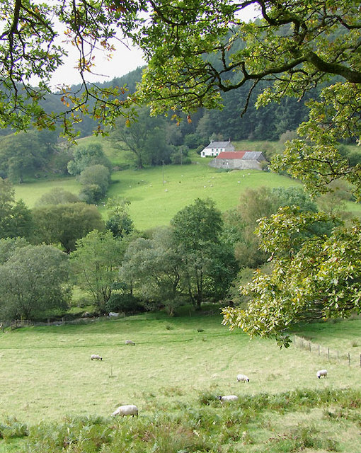 Across Cwm Cnyffiad, Powys
