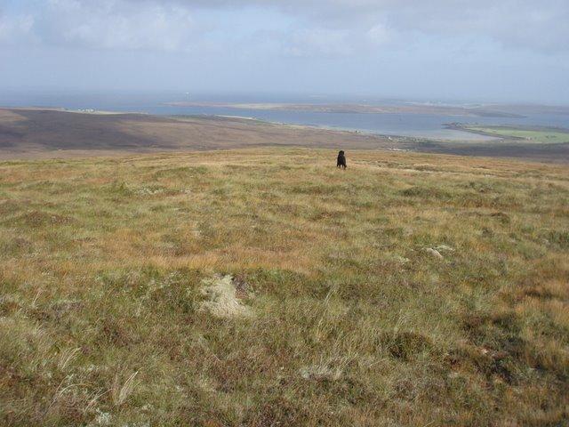 Hillside below Moi Fea