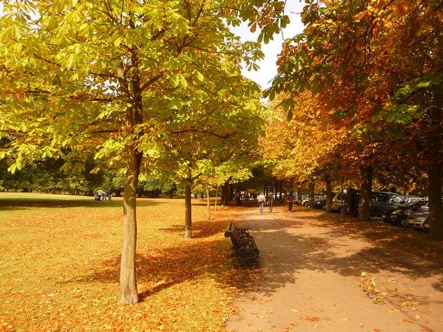 Greenwich: an autumny feel in Greenwich Park