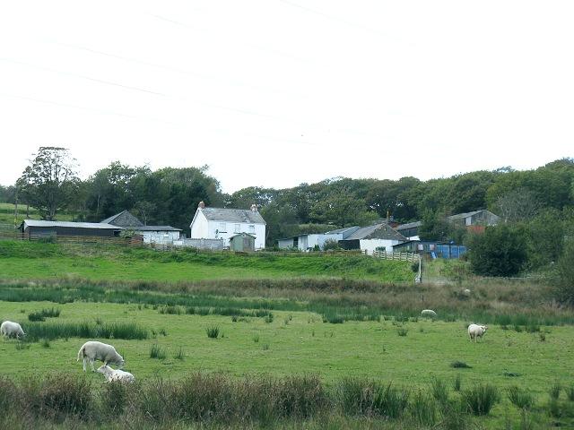 Cwm-nant-Lleiky farm