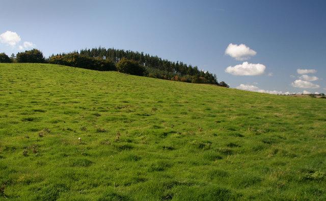 Humbleton Hill