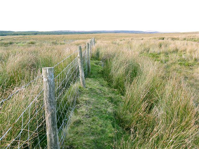 Fence across the moor near Nant y Fedwen