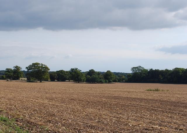 Farmland near West Stoke