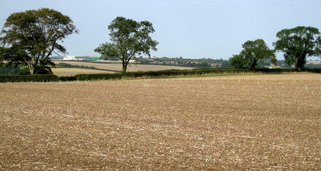 Towards Old RAF Binbrook