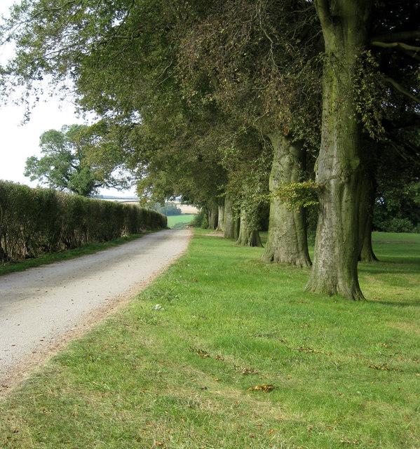 Farm road, Binbrook Top