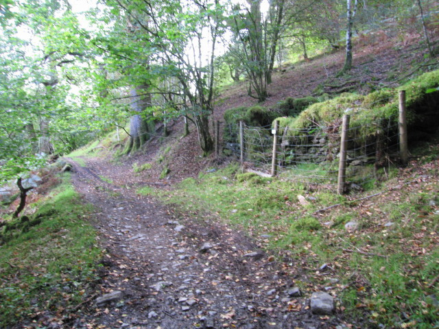 Tumbledown by the path