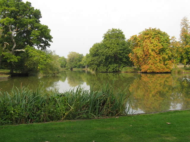 Early signs of Autumn at Ewhurst Manor Pond