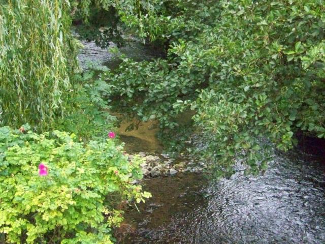River Alham, Alhampton
