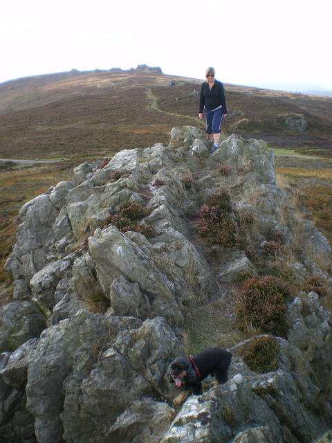 On Shepherd's Rock