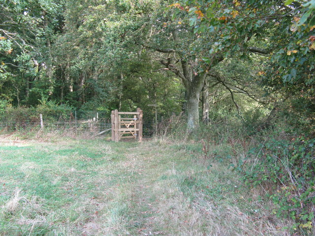 New Kissing gate at field boundary with Wood