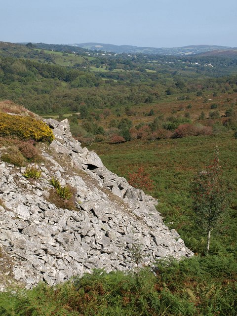 Edge of spoil heap, Holwell Quarry