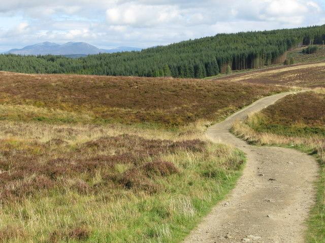 Schiehallion Path