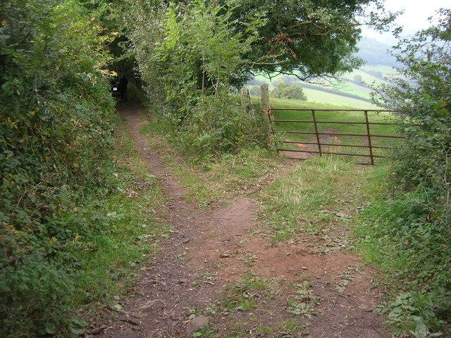 Field entrance off Coxbury Lane