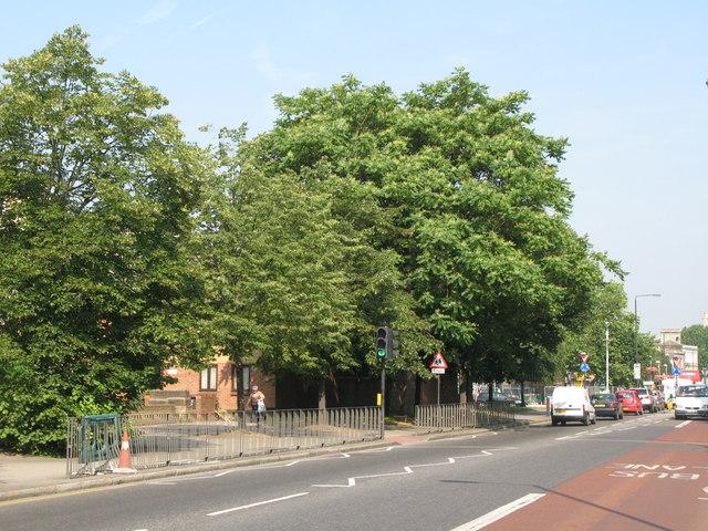 Evelyn Street, SE8