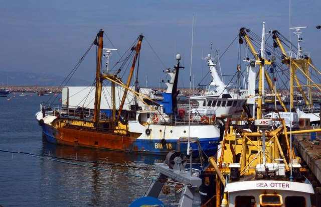 Fishing trawlers at Brixham
