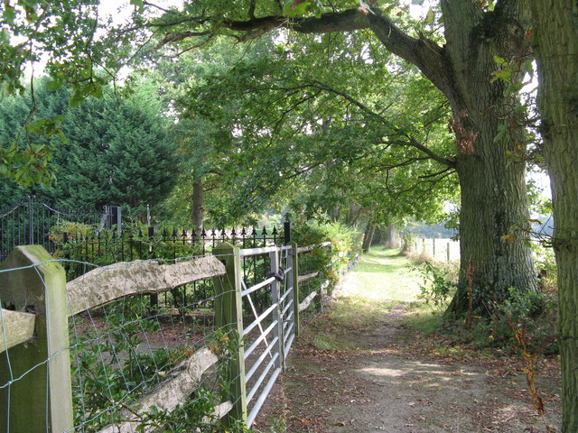 Footpath to The Hangers wood