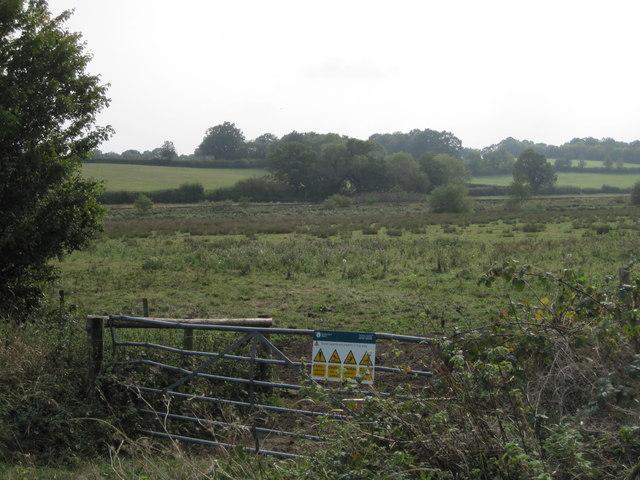Fields near Etchingham
