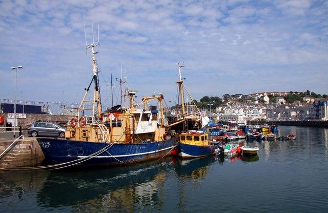 Boats at Brixham