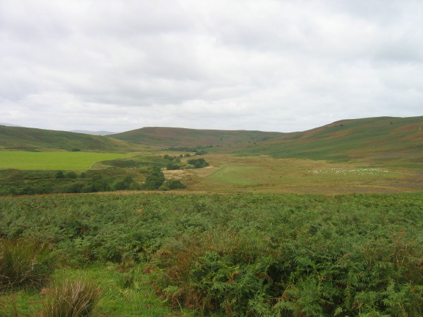 View of Stock Brook Valley