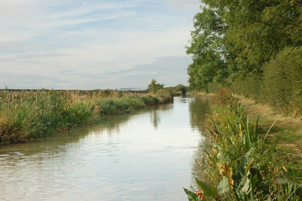 Oxford Canal south of Marston Doles