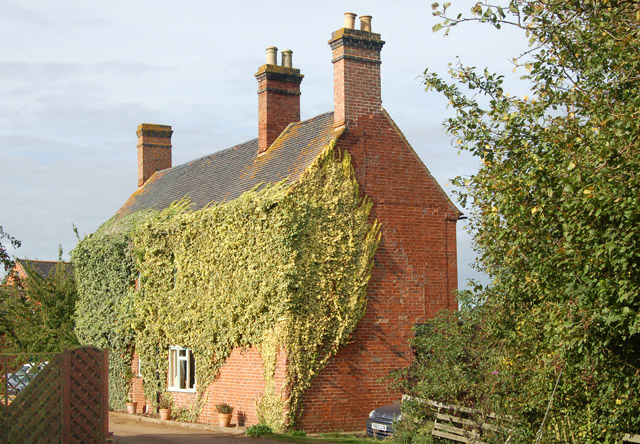 Ivy covered house, Marston Doles