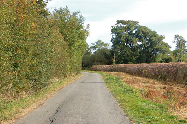 Looking north along the lane from Marston Doles to Napton