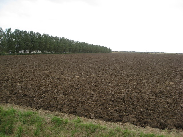 Huttoft - Jolly Common Lane view of ploughed land