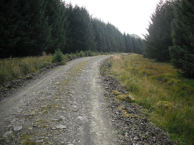 Forest road, Stennishope