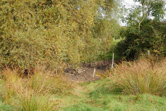 Dry pond near Potash Farm