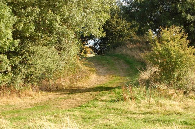 Farm track crossing old railway, Flecknoe
