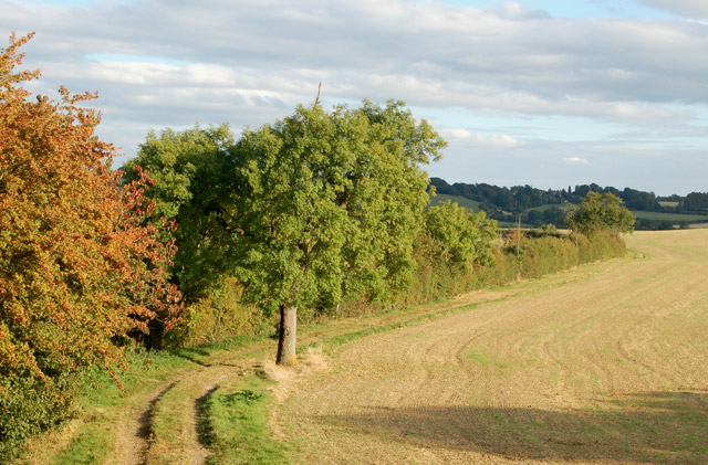 Farm track southeast of Flecknoe