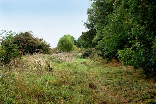 Old railway south of Flecknoe (2)