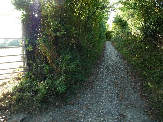Stony path through Blakeway Hollow near Much Wenlock