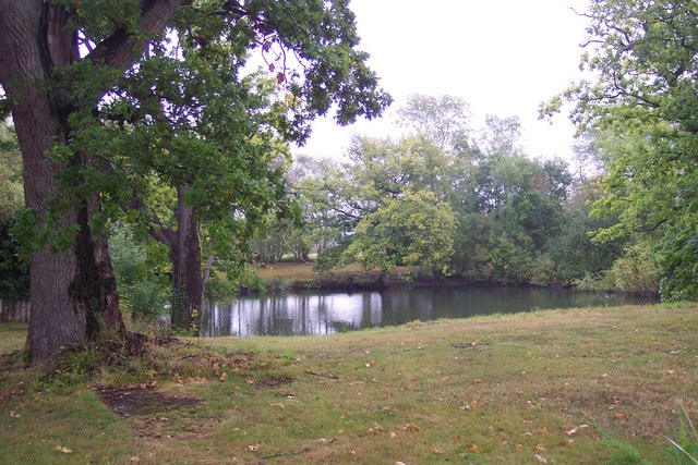 Bettenham Manor Pond