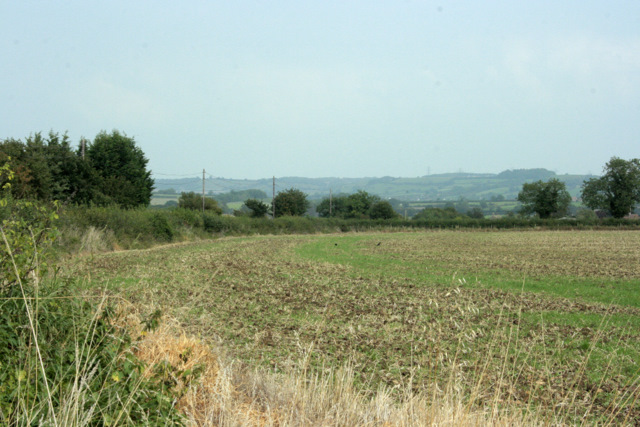 2009 : East from Lodge Road