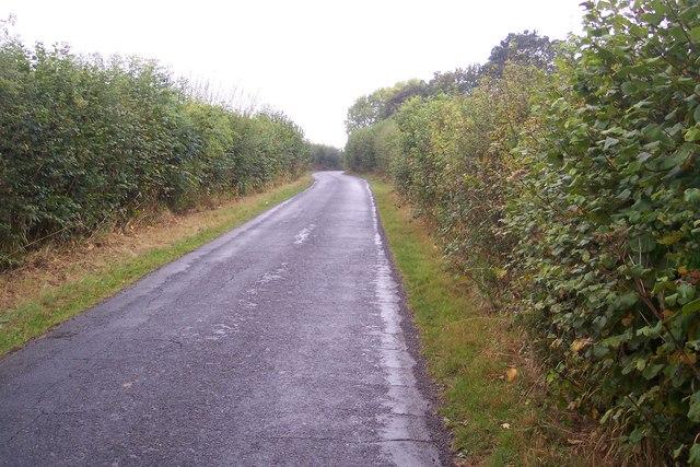 Digdog Lane, near Bettenham Manor