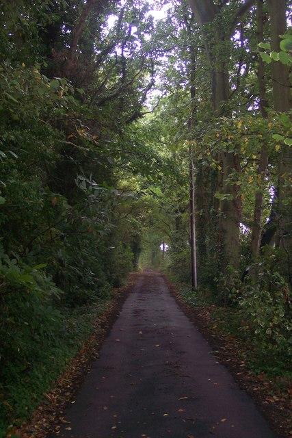 Bridleway near Horse Race House
