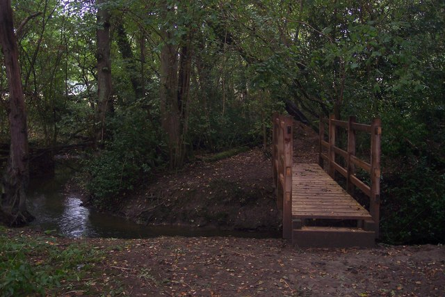Footbridge in Birch Wood (2)