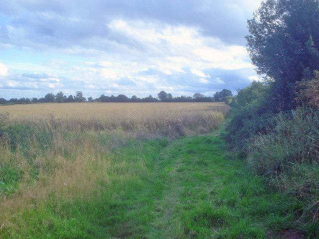 Bridleway to Normanton Lane