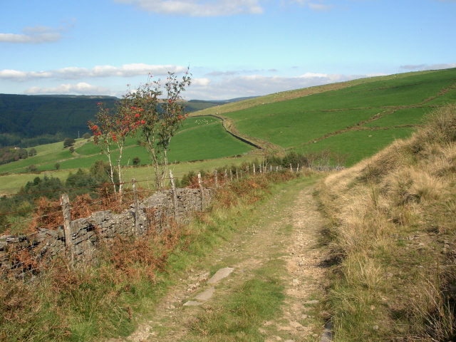 On the byway from Cynonville to Caerau