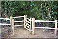 TQ7935 : Kissing Gate on High Weald Landscape Trail by David Anstiss