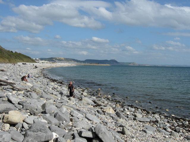 Fossil hunters near Seven Rock Point, Lyme Regis